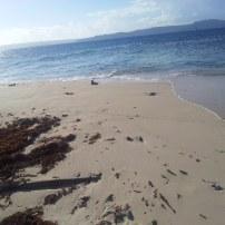 Lime Cay, Jamaica